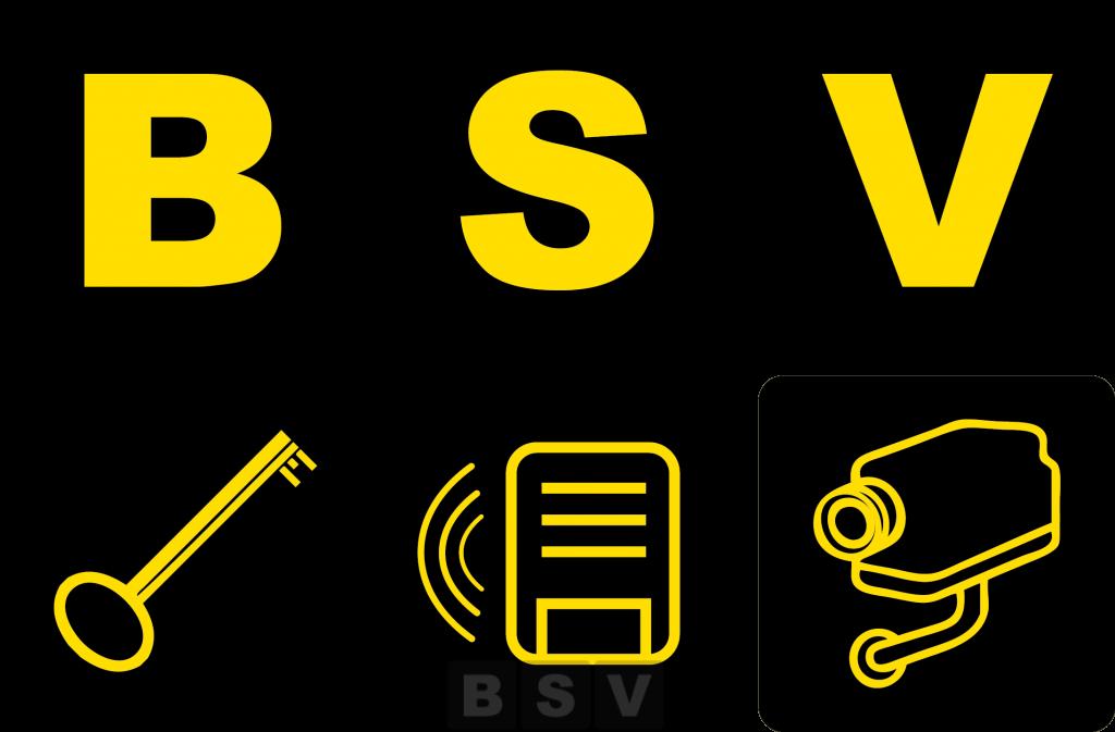 logo BSV Diksmuide